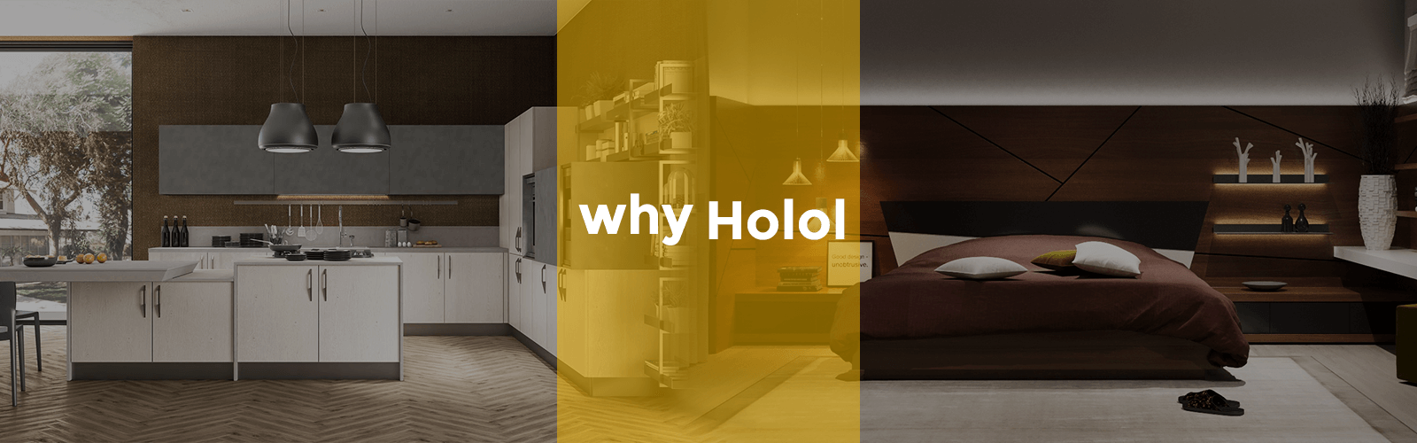 why holol -